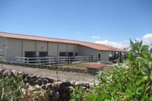 BEC-300x199 The Boquete Equestrian Center Boquete Panama