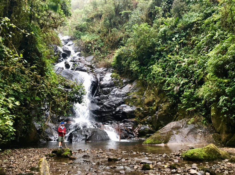 fullsizeoutput_afd Hiking Panama's Amistad National Park Hiking in Panama The Great Outdoors