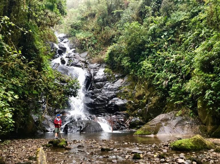fullsizeoutput_afd Hiking Panama's Amistad International Park Hiking in Panama Panama The Great Outdoors