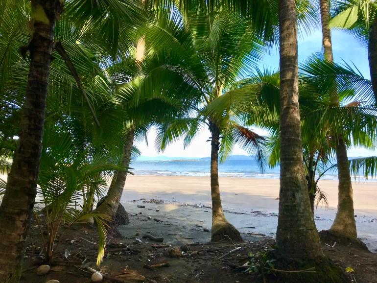 fullsizeoutput_f38-1024x768 Punta Duarte - One Last Panama Road Trip! Azuero Peninsula Panama