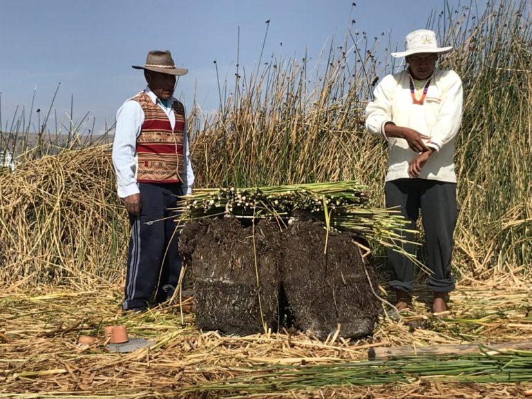 BBF6CFFD-3912-452B-8BB5-E5DED74EBFC2-1024x768 Peru Explorations: The People of Lake Titicaca Lake Titicaca Peru Puno