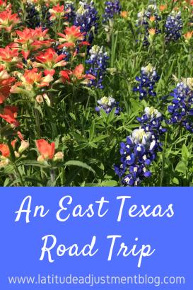 653A287F-E018-4B35-B4C3-5DCDEDF4C98A-683x1024 A Road Trip to Longview, Texas Texas