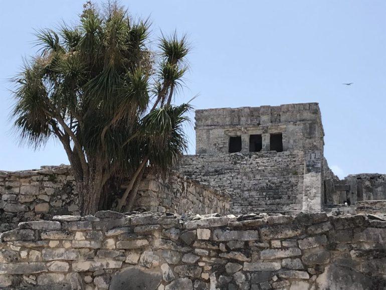 Mdau0JZgRHK2l3SemTLNnA-1024x768 Tulum, Mexico: Paradise Lost? Mexico