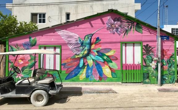 fullsizeoutput_2022-1024x635 Isla Holbox, a Mexican Jewel Mexico