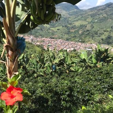 fullsizeoutput_210d Colombia Heritage Towns: Jardín Colombia Jardin South America