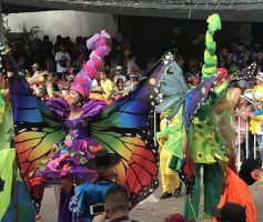 061268D0-BD10-4C15-88EC-C6F23E94AEB6_1_201_a-scaled Colombia's Carnival! Colombia