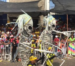 A34D45A8-6E02-428A-AA6E-A6B61D2A95F2_1_201_a Colombia's Carnival! Colombia