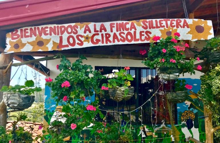 DF6BD0FE-050D-464C-B9DD-7912BD0EADEB_1_201_a-1024x666 A Visit to a Colombian Flower Finca Colombia Medellin