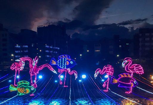FEC5026F-119C-47BF-AD69-6A98DCBA1A7B_1_201_a-scaled ¡Feliz Navidad! Medellín Lights Up for Christmas Colombia Medellin