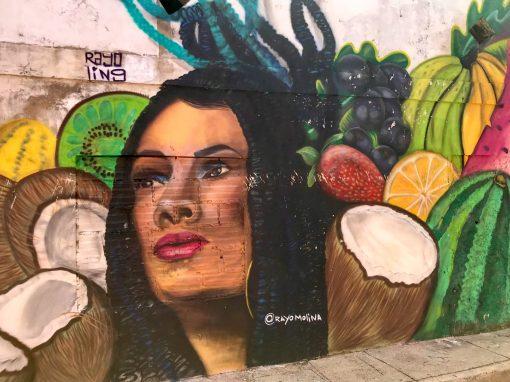 fullsizeoutput_52d3-scaled Cartagena Street Art Walking Tour Colombia