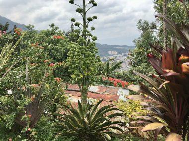 IMG_1461-scaled Touring Medellin's Barrio La Sierra Colombia Medellin