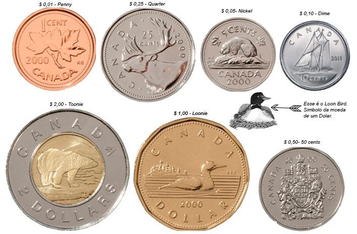 adventurous - Coins2.jpg