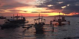 "News des ""Visayas Latoniccia Divers"""