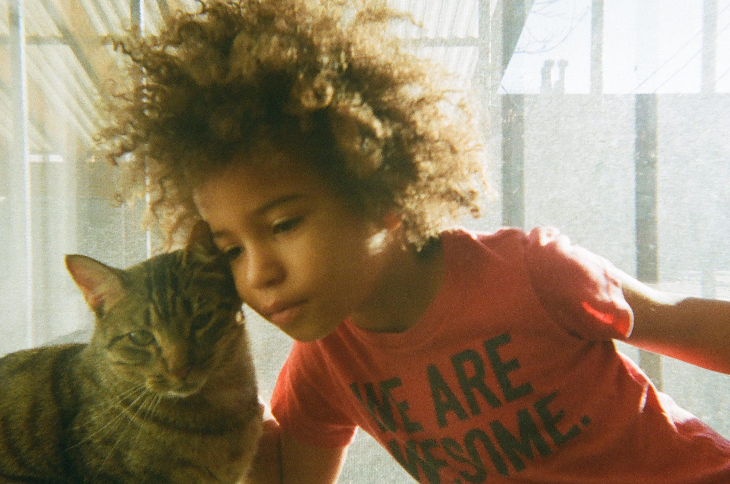 Cats As Companions During Coronavirus