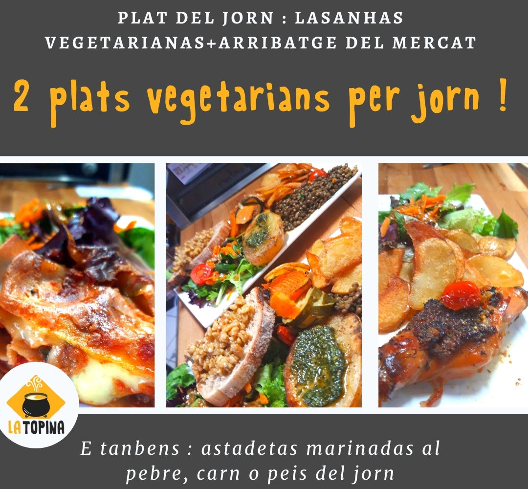 vegetarian_insta