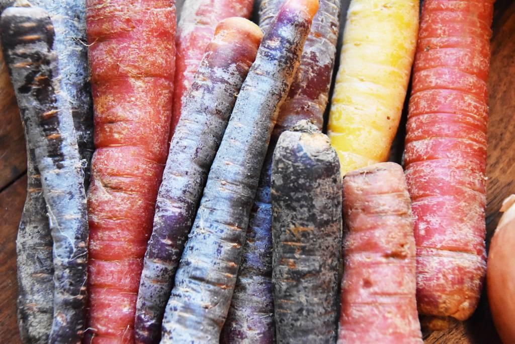 carottes colorées galerie