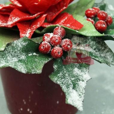 Weihnachtsstern und Ilex