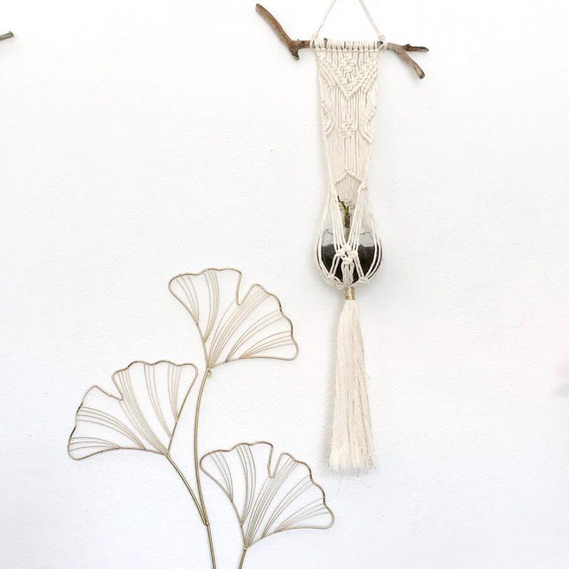 atelier suspension pour plante