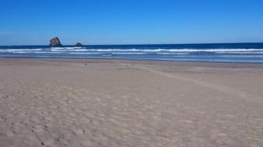 Península de Otago.