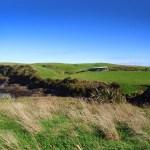 NZ 2013 – Dia 8: Catlins II