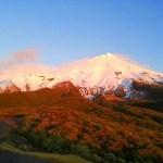 NZ 2013 – Día 18: Egmont N.P – Tongariro N.P