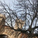 Daroca – (Teruel)