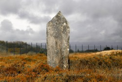 c6d_2014_cwall_goonhilly-76-2
