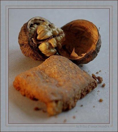 sablé aux noix