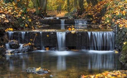 ruisseau bois des Templiers, pose 30 secondes, pose longue, sous-bois d'automne