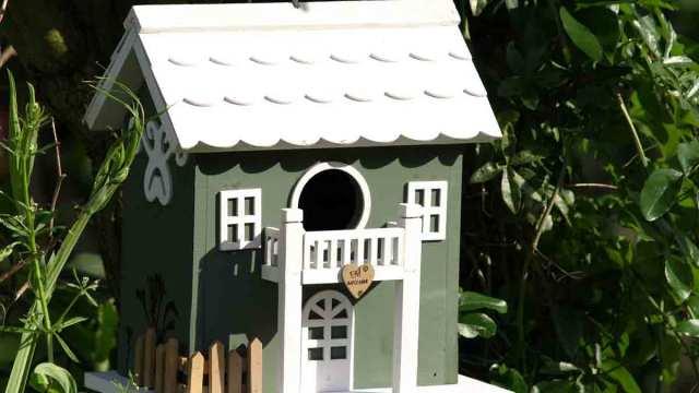 las mejores casas para pájaros
