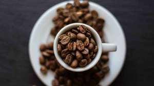 propiedades y beneficios de la cafeina