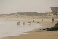 Mancora beach (2)
