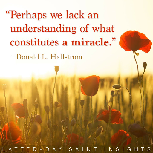 """Poppy field in front of a sunset with the quote, """"Perhaps we lack an understanding of what constitutes a miracle."""" by Donald L. Hallstrom"""