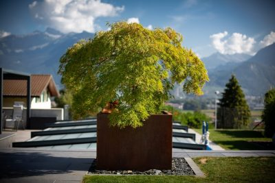 Lattion&Veillard Paysagiste Piscine et spa Valais Suisse (10)
