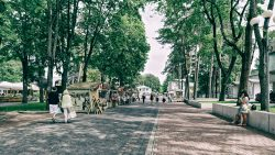 Image: People walking in the streets of Jūrmala an on a sunny day. A photo taken in better times than now. Photo © 2014 by Birk Karsten Ecke. Click on the image to enlarge it.