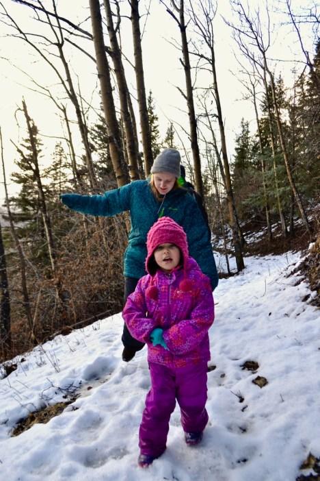 Resurrection Pass South Trail