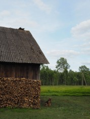Country house and its trusted guardian