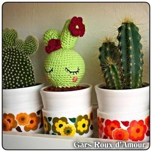 cactus crochet fait main création les gars roux d'amour