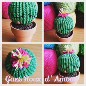 crochet cactus les gars roux d'amour création