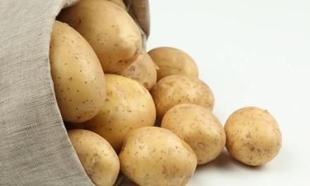 Il discepolo e il sacco di patate