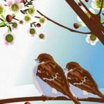 I due passerotti
