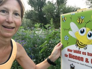 Blühende Bienenwiese