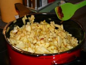 Die Apfelstücke dazugeben und bei reduzierter Hitze kräftig umrühren,