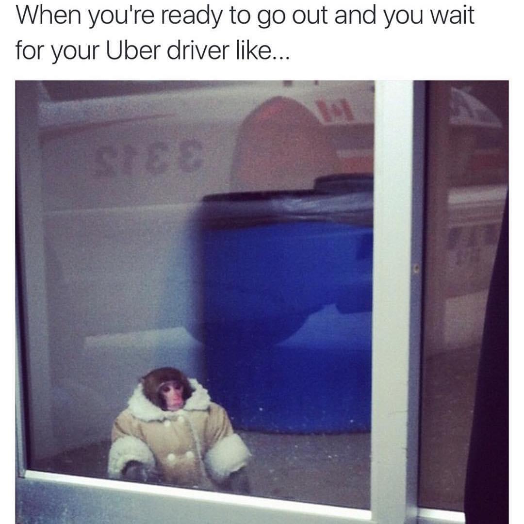 Funny But True Friendship Memes