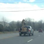 Giraffe watch out for the bridge