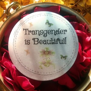 trans-is-beautiful6
