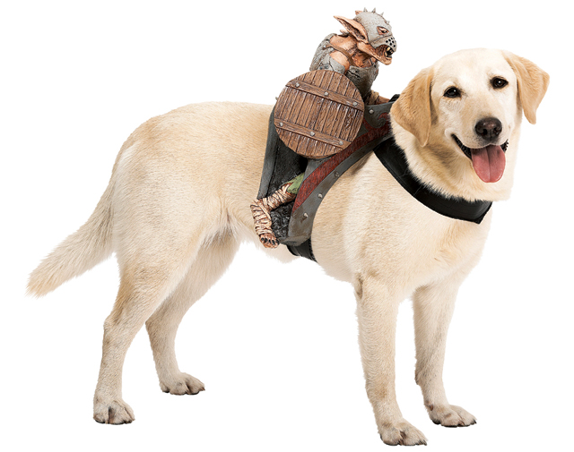 Costumes Ride Dogs