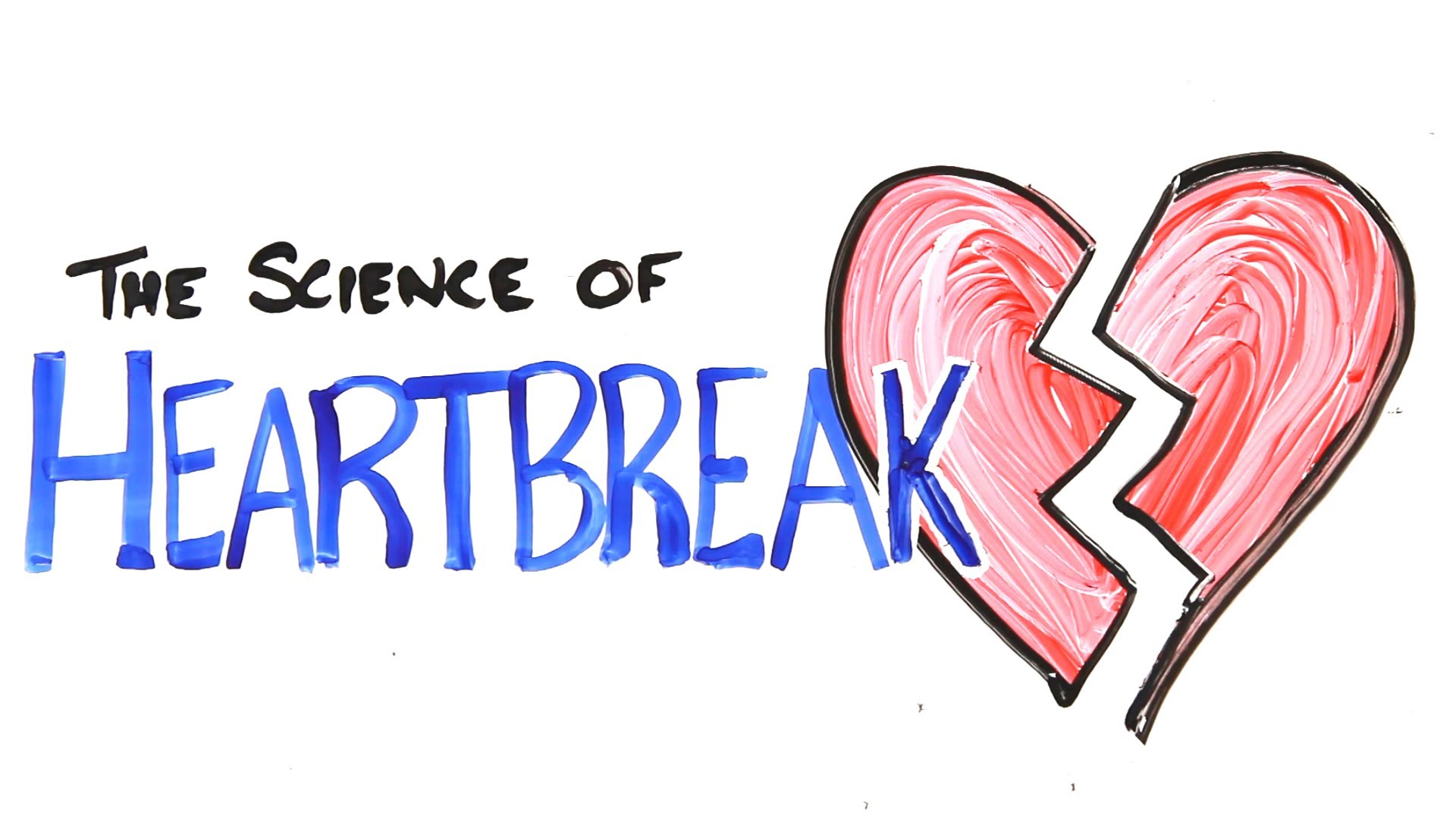 The Science Of Heartbreak By Asapscience