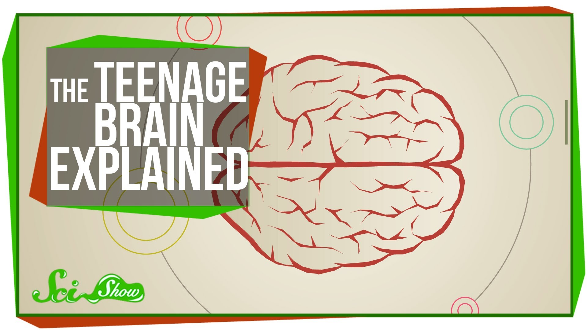 Scishow Explains The Teenage Brain