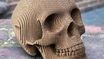 A Delicious Life-Size Chocolate Replica of a Human Skull